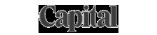 as seen logo 2